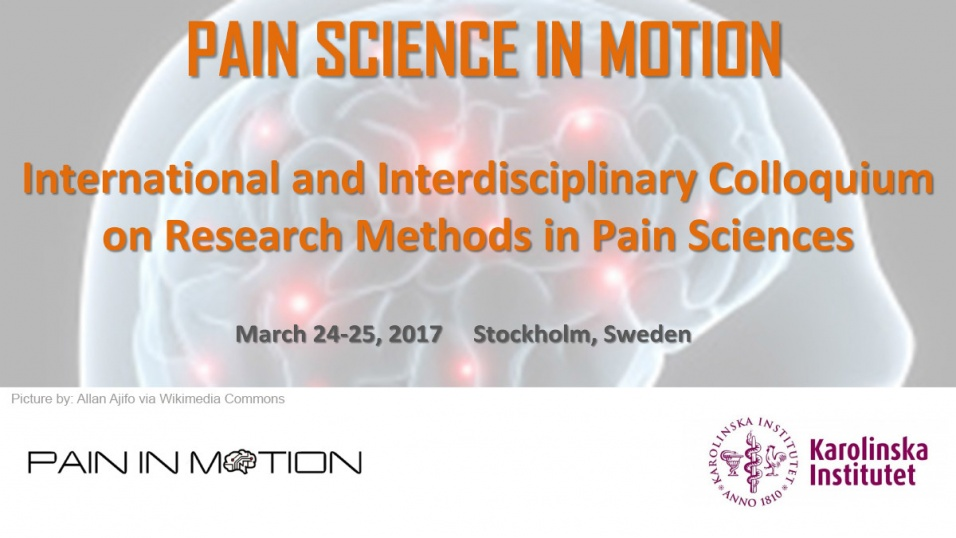 Pain in Motion banner